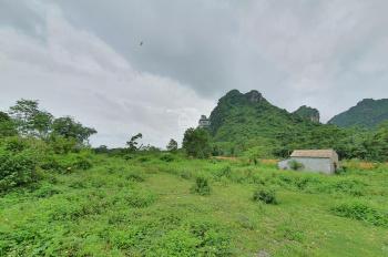 Cần bán lô đất 7000m2 có 105m mặt đường và có 1200m2 đất ở tại Liên Sơn