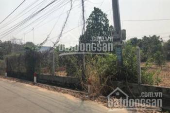 Bán gấp đất vườn Chơn Thành, Bình Phước KCN Becamex, DT: 1033m2, giá 550 triệu, SHR, LH: 0903341321