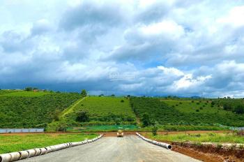 Bán đất Bảo Lộc full thổ cư, giá rẻ sổ riêng từng nền