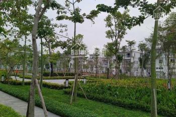 Chủ nhà cần cho thuê căn biệt thự khu K Ciputra, DT 140m2, hướng Nam