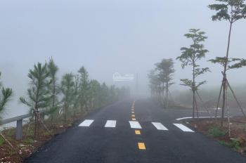 Đất nghỉ dưỡng Đà Lạt 650 triệu, sổ hồng riêng