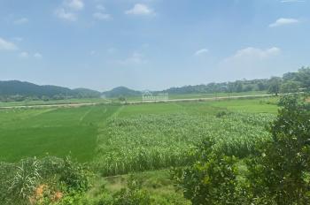 Gia đình cần bán mảnh đất xã Vân Hòa - Ba Vì LH 0357444111