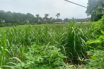 Cần bán 2400m đất ở cộng vườn , gần khu sinh thái long Việt , giá 1.2tr/1m 0971274648
