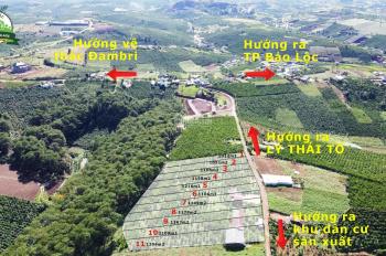 Đất đường Lý Thái Tổ, giá chỉ từ 1tr2/m2 view tựa như Đà Lạt