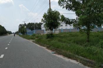 bán đất ngay Lai Hưng-bàu bàng cách quốc lộ 13 chỉ 100m