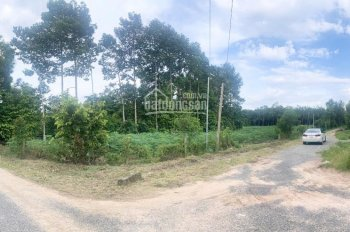 Đất nền TT 899 triệu/1000m2 KCN Phước Bình - Đất hồng thổ cư 100%
