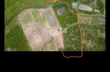 Bán Đất Vườn 2sào2 Có ao quanh năm có nước view đẹp giá chỉ 820tr 2s2