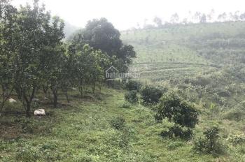 Trang trại 15ha view đỉnh ở thị trấn Lương Sơn giá chỉ vài tỷ. LH 0943.346.523/ 0352.066.978
