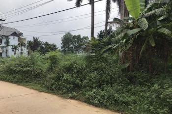 Bán 2000m2 đất nghỉ dưỡng tại Yên Bài, Ba Vì, Hà Nội
