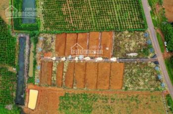 Siêu phẩm đất nền Đambri Hill Village, Bảo Lộc chỉ 2,2 tr/m2, sổ hồng riêng