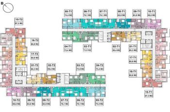 Bán 2 suất vào tên CH tại dự án Blue Star Trâu Quỳ - Gia Lâm DT 60.8m2 và 75.1m2 LHCC 0981117158
