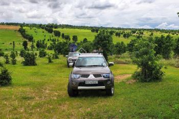 Đầu tư đất du lịch tỉnh Bình Thuận - 50k/m2 sổ sẵn, công chứng sang tên ngay DT từ 3000 - 30000m2