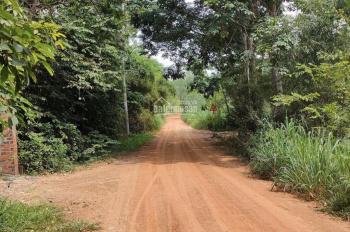 Bán đất ngay Lai Hưng, cách cây xăng Hiệp Thành Phát chỉ 100m