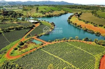 Đất nền thổ cư SHR khu Dambri thành phố Bảo Lộc giá mềm.