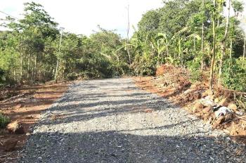 Chính chủ cần bán gấp lô đất xã Suối Cao - huyện Xuân Lộc - tỉnh Đồng Nai. Diện tích 20x53m