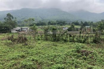 71100m2 view cao thoáng bám đường bê tông phù hợp làm nhà vườn nghỉ dưỡng hoặc đầu tư sinh lời