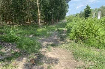 1878m2 đất Vĩnh Thanh, đường oto tận đất giá chỉ 2ty, lh 0947325309