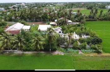 Cần bán đất Tiền Giang DT 7000m2 đất ruộng trong đó có 1653m2 đất thổ kèm nhà 100m2
