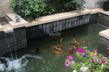 Bán siêu biệt thự Cư Xá Tự Do, CMT8, P7 Tân Bình, DT: 7x20m, trệt 3 lầu tuyệt đẹp, giá chỉ 31.5 tỷ
