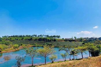 Bán đất ven hồ phía Nam Đà Lạt - thổ cư, sổ hồng