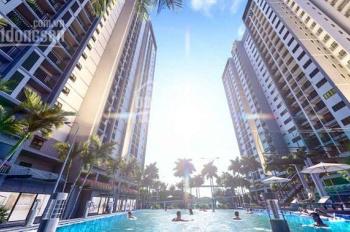 Mở bán block C dự án Eco Xuân Lái Thiêu Bình Dương cơ hội lớn cho các nhà đầu tư