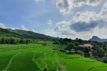 Chuyển nhượng 6000m2 đất view cực đẹp có 102 tại Hòa Sơn Lương Sơn