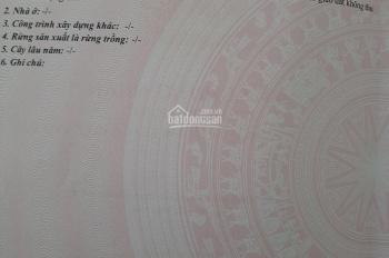 Cần bán Lô đất đẹp 1000m2 sổ hồng riêng đầy đủ tại Trảng Bom, Đồng Nai LH xem đất 0913171441