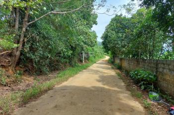 Cần bán lô đất ở xóm Đồng Âm, Quốc Oai, Hà Nội diện tích 878m2 có 400m2 thổ cư