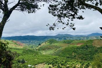 Đất thổ cư 100% ngay ngã 5 Damb'ri, hiện thực hoá ước mơ sở hữu Homestay, có ĐV quản lí vận hành