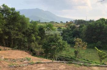 Cần bán gấp lô 2260m2 ở Nhuận Trạch, Lương Sơn, Hòa Bình