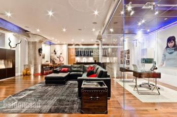 Cần bán gấp căn hộ Vinhomes ở 54 Nguyễn Chí Thanh. 167m2, 4PN, căn góc, đủ đồ đẹp, 11.5 tỷ