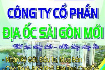 Bán cao Ốc Sài Gòn New Tower số 62-64 Nguyễn Biểu, Q5, Dt 11,6 x 30m, hầm, 9 lầu.LH:0902828902