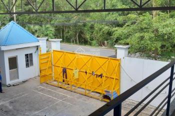 Bán kho xưởng 1250m2 (300m2 thổ cư) mặt tiền đường Thanh Niên, Bình Chánh DT 25x50m, giá 15tr/m2