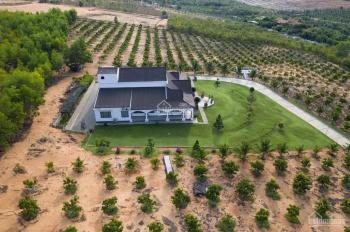 Chính chủ cần bán 5 sào đất vườn sổ riêng chỉ 350tr gần thị trấn Lương Sơn, LH 0938 065 294
