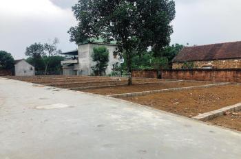 Bán nhanh lô đất nền tại Tân Xã, Hoà Lạc, đường trước nhà 10m, giá chỉ hơn 800tr. LH 0978 504 403
