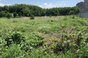 Tôi chính chủ kẹt tiền cần bán lô đất ngay KCN Bàu Bàng, 300m2, 150m2 SHR, 1 tỷ, 0902581511