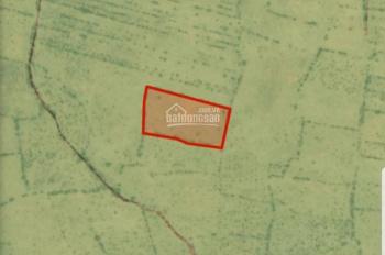 Bán lô đất ngay sau KDC Quốc lộ 1A vào, DT 11337m2 có sổ đỏ giá 49.000đ/m2 chủ bán giá tốt gần biển