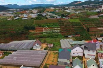 Bán lô biệt thự view đẹp giá tốt - khu dân cư Xuân Thọ, Đà Lạt - 459m2, giá 4,5 tỷ
