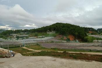 Lô đất 3 mặt tiền view đẹp khu làng hoa Vạn Thành, Đà Lạt - 307m2, giá 7,1 tỷ