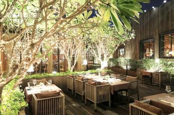 Hot, nhà mặt phố Trần Đại Nghĩa gần khu Bách - Kinh - Xây, 32m2x5T, MT 3.5m, giá thuê 25 tr/th