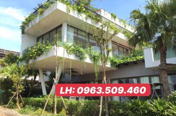 Cần bán lô LX.15 480m2 BT Legend Villa Flamingo Đại Lải - 11,8 tỷ, cho thuê 120tr/th. 0963509460