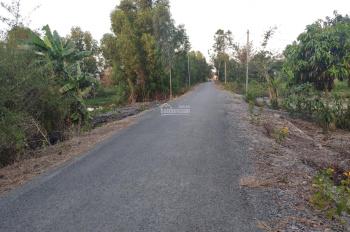 Bán đất cạnh khu công nghiệp Long Giang, 2040m2, xã Tân Lập 1, huyện Tân Phước