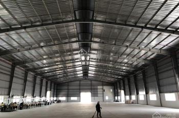 Cho thuê xưởng ngay cầu Mỹ Thuận DT 6000m2 giá 240 tr/th
