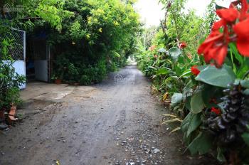 Bán gấp đất vườn KDL Cầu Ngang, Hưng Định, 1000m2 rất đẹp
