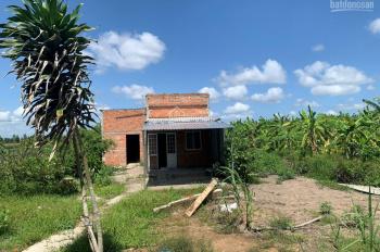 Chính chủ bán đất Tân Lập 2, gần KCN Long Giang, Tiền Giang