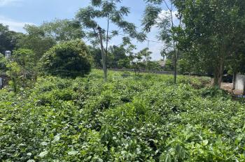Chính chủ cần bán gấp lô đất 1971,5m2 tại Thôn 2, Ba Trại, Ba Vì, Hà Nội. LH Thu Hương: 0975349726