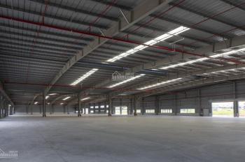 Công ty Hoa Phượng cho thuê kho, xưởng KCN Giang Điền, Trảng Bom, Đồng Nai(1000m2 đến 50.000m2)