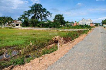 Đất lập vườn giá rẻ - 1000m2 (300 triệu) - nhà dân đông, đường ô tô lớn