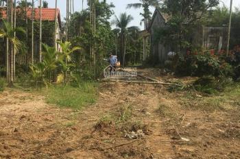 Cần bán lô đất view dừa nước Cẩm Thanh, Hội An, Quảng Nam