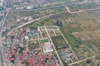 Đất đấu giá Xuân Ổ B - TP Bắc Ninh, sổ hồng cầm tay